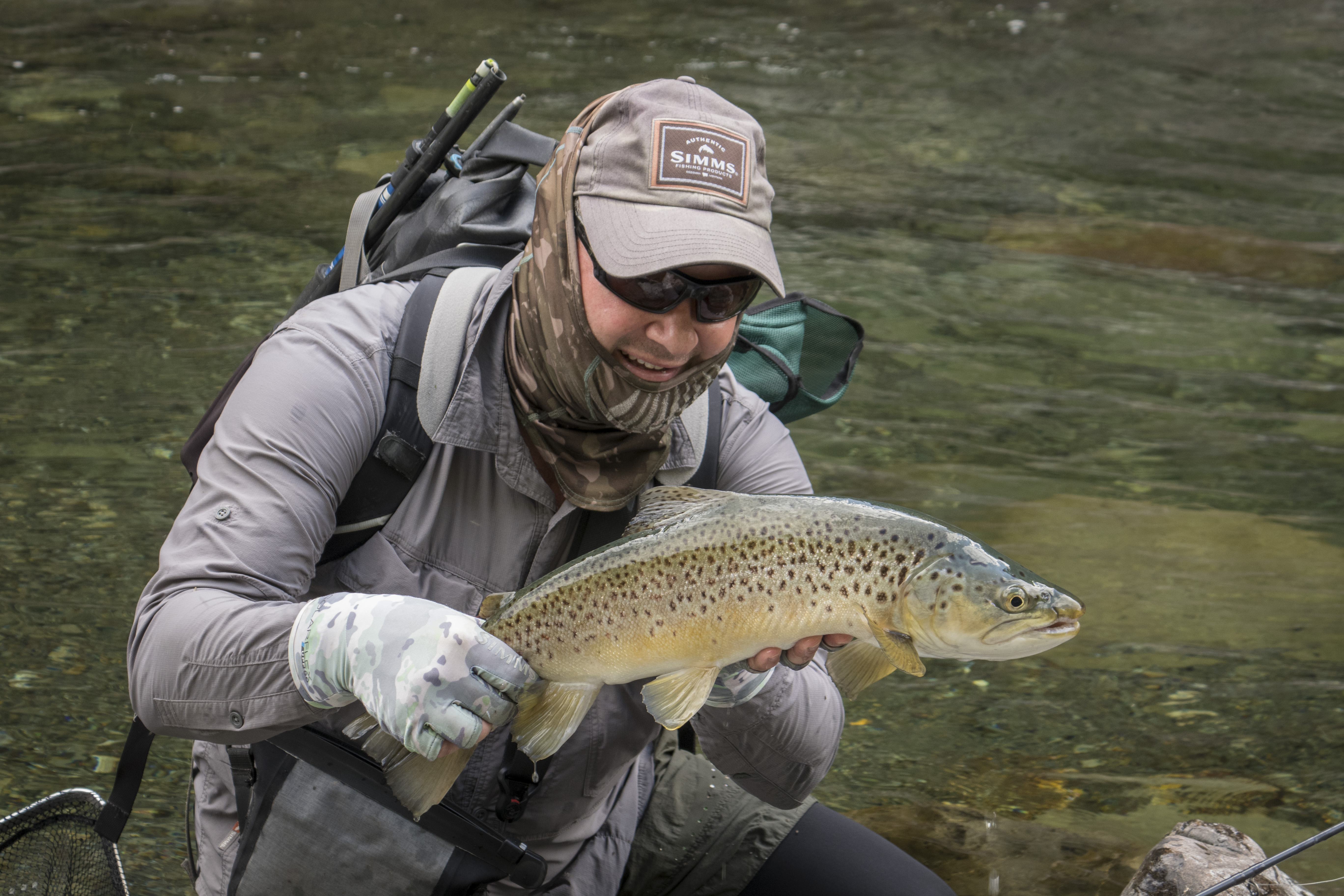 A quality brown from a river within easy striking distance of the capital