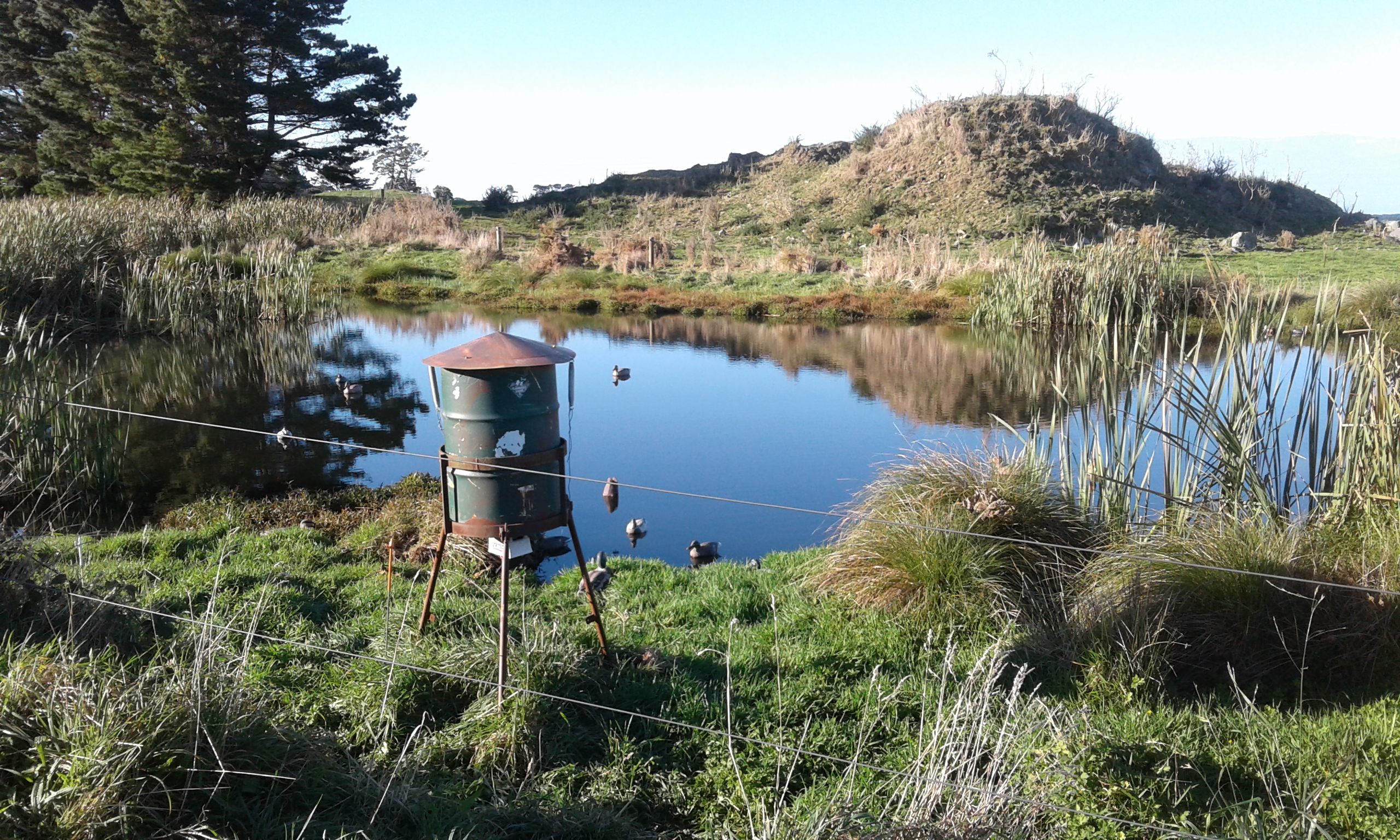TBB1May19. The fine and calm conditions meant pond shooting was fairly slow on opening weekend