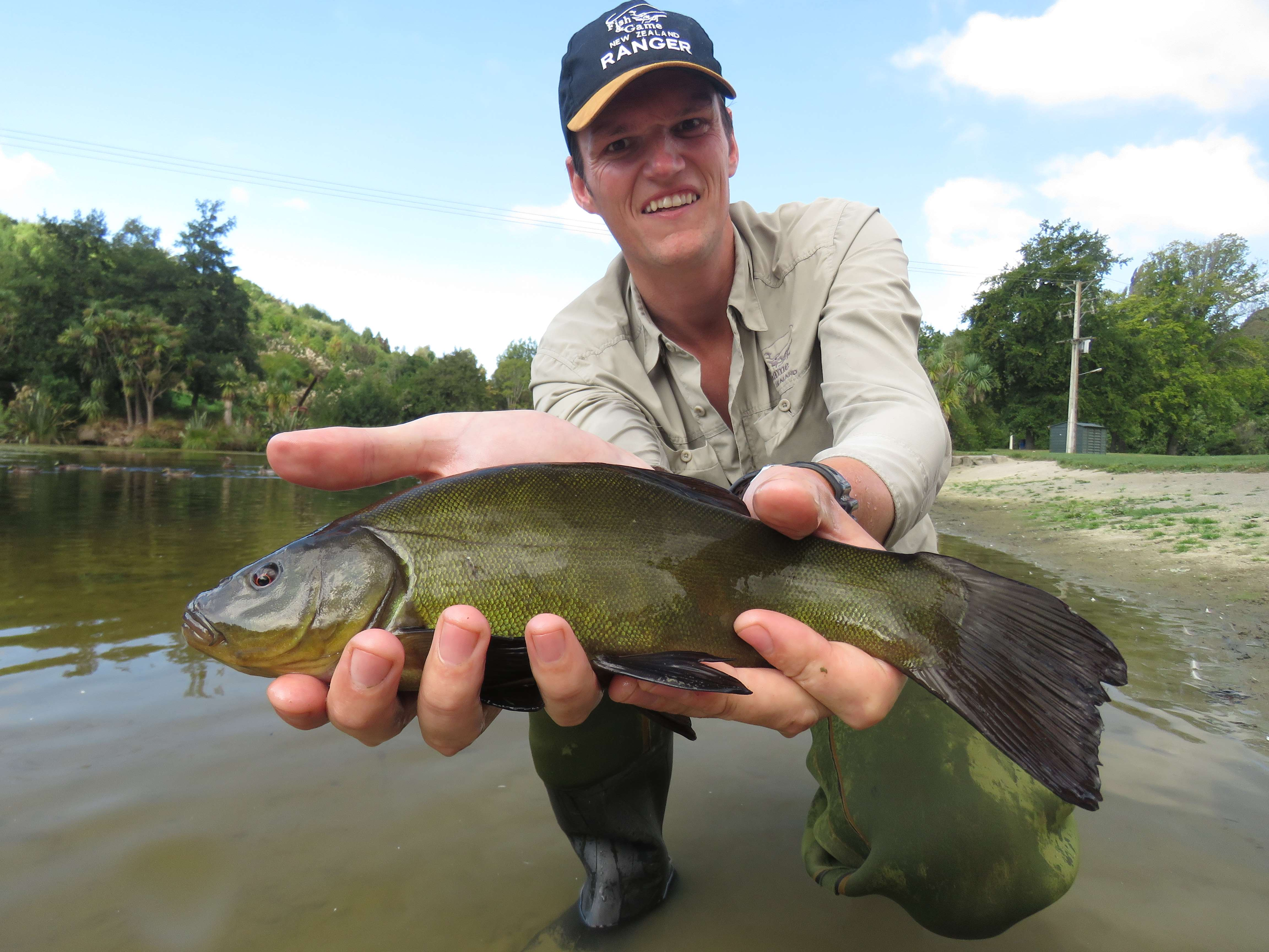 WFR1820.52Fish Game Officer Hamish Stevens displays a Centennial Park tench Credit R Adams