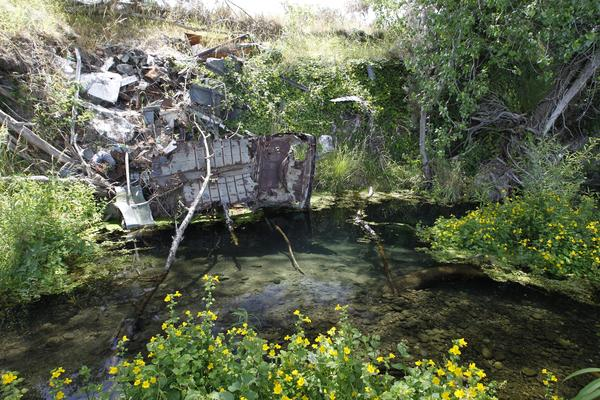 Illegal dumps – another regional council failure