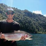 10lb rainbow caught jigging on Lake Rotoiti, central North Island. We were fishing the Seeka Kiwifruit competition and hooked this winner 30 minutes before lines out. Photo from Cody Law
