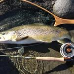 Small stream,tough fight on a 4wt,built the reel,tied the flies and released the fish.Very satisfying 2 hours fishing one afternoon. Photo from Michael Bakker