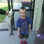 Hunter(5)with his 8lb sea run trout caught(07/09/13) in Henley. Photo from Michael Skilling