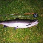14 pound first cast ever on a fly rod Photo from Jamie blair