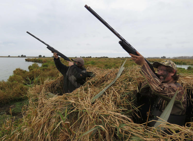 BB CSI 1 time to set your sights on the 2020 game bird season Credit Rhys Adams