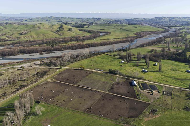 Hawke27s Bay feedlot by Tukituki River and Papanui Stream 1 1