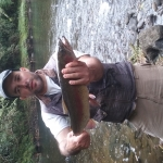 Nice colorful 8lb rainbow trout of the Patea river.