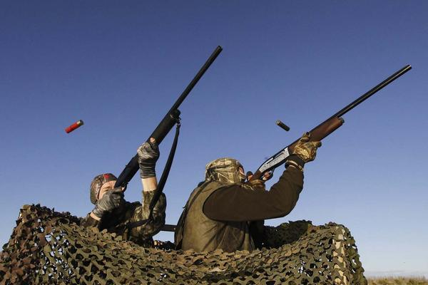 Where to Hunt Game Birds